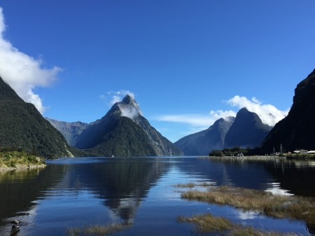 A perfect day in Milford Sound.
